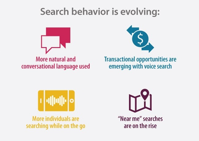 search behavior