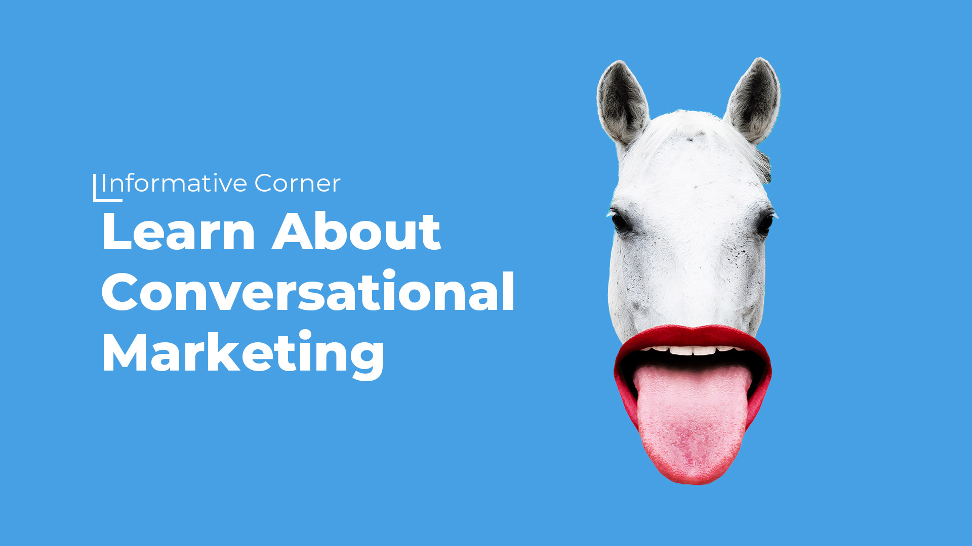 Informative Corner - Learn About Conversational Marketing